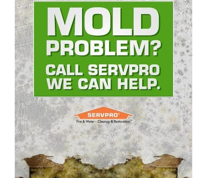 "A wall with mold growth, text says ""Mold Propblem? Call SERVPRO, we can help."""