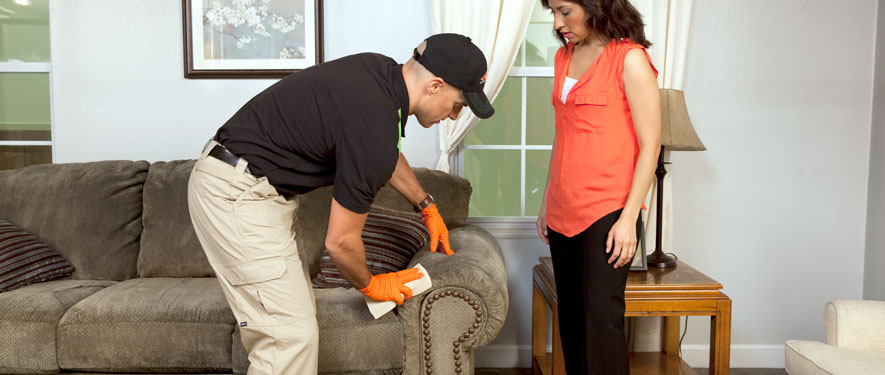 Downey, CA carpet upholstery cleaning