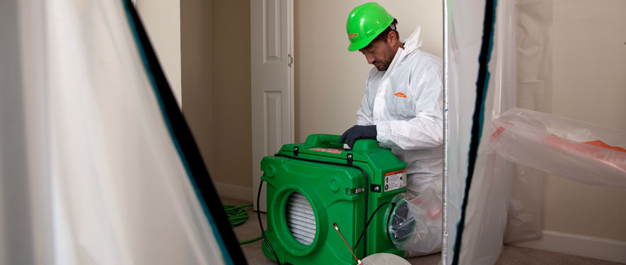 Downey, CA mold cleanup